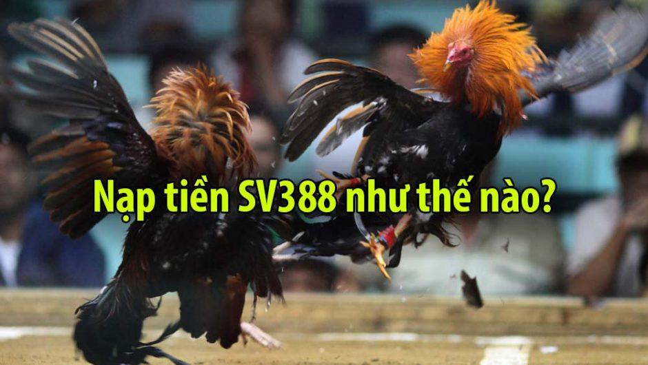 Nạp tiền SV388 | Nạp tiền SV388 nhanh chóng an toàn